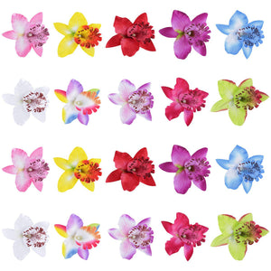 20 Pack Fake Faux Artifical Silk Orchid Flower Hair Clips Barrettes Clamps Clasps Bows With Alligator Brooch Pins Tropical Hair Pieces Accessories Tailand Beach Holiday Wedding Party Tabletop Decoration Hairstyles Bohemian Hawaiian Headwear for Women