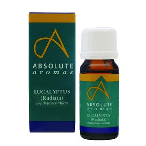 Eucalyptus Radiata Essential Oil 10ml