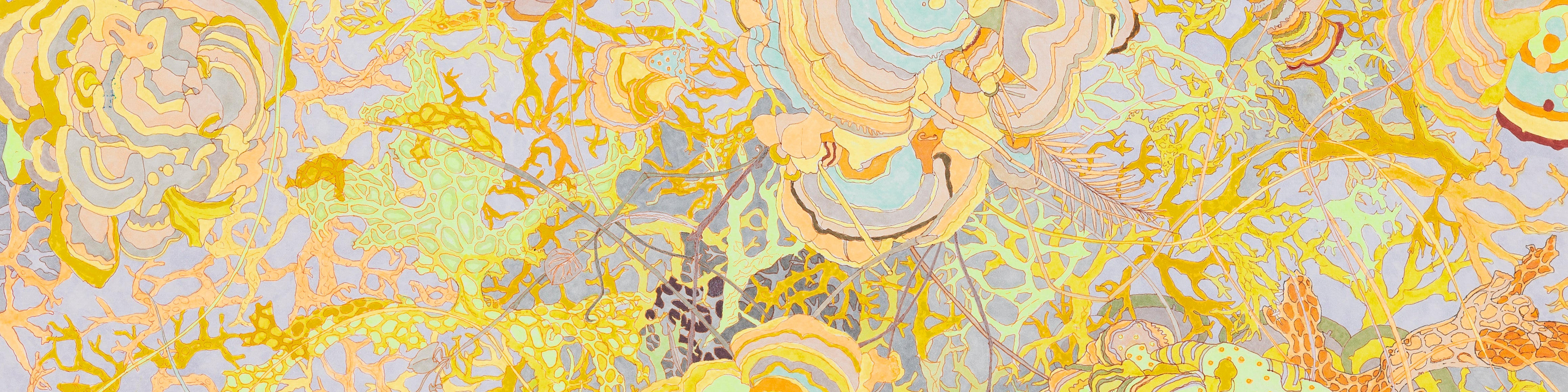Polypore fungi drawn in a art nouveau style with a profusion of color