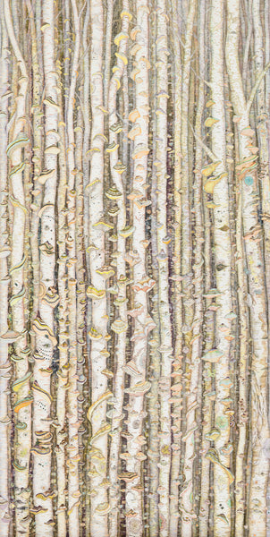 Schöner Wald is an archival inkjet print an edition of eleven prints of birch trees adorned with colorful polypore fungi