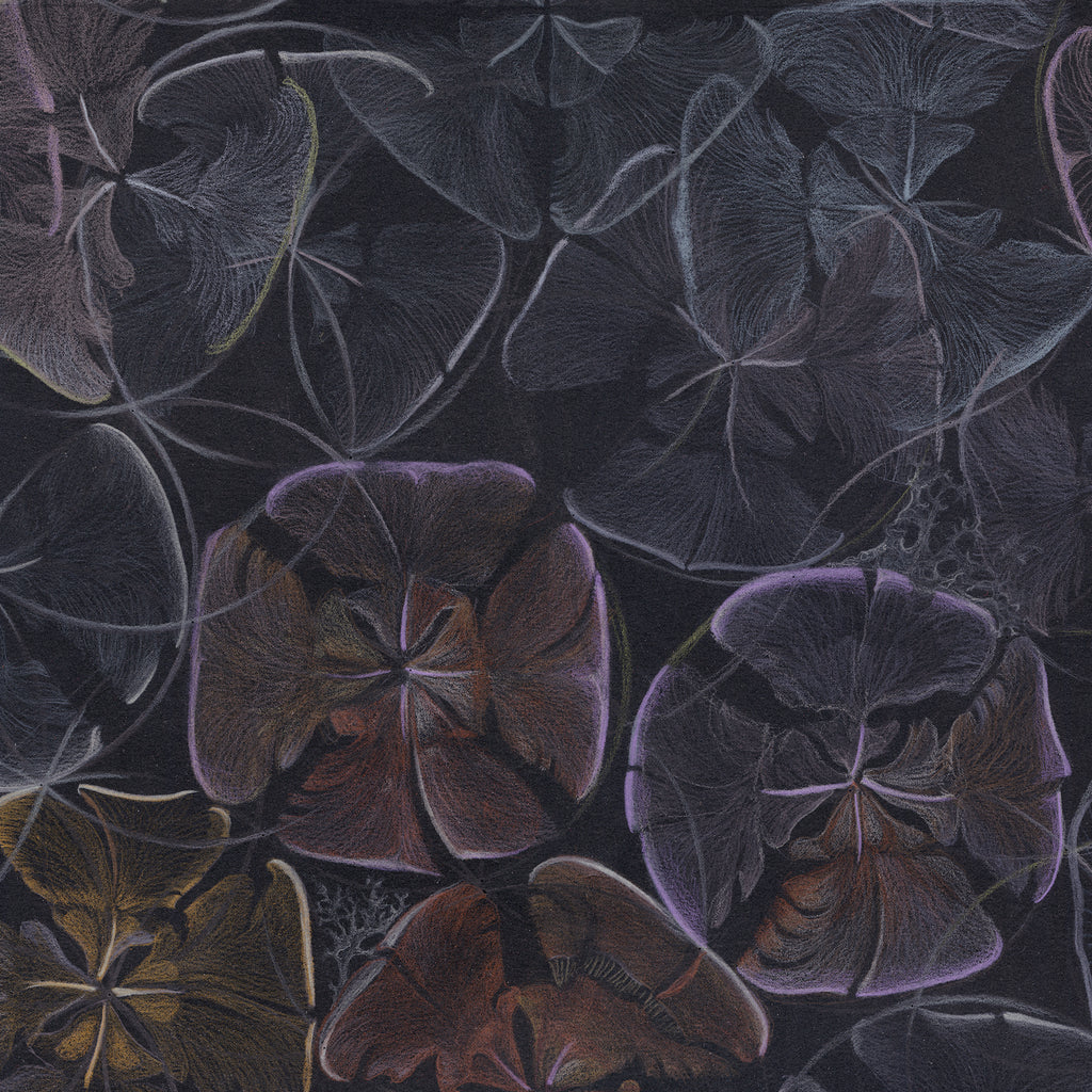 Detail from Claire Burbridge's dark and moody Cedar Cones wallpaper