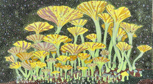 Forest, pen and ink, pointillism technique bioluminescence fungi original drawing by artist Claire Burbridge