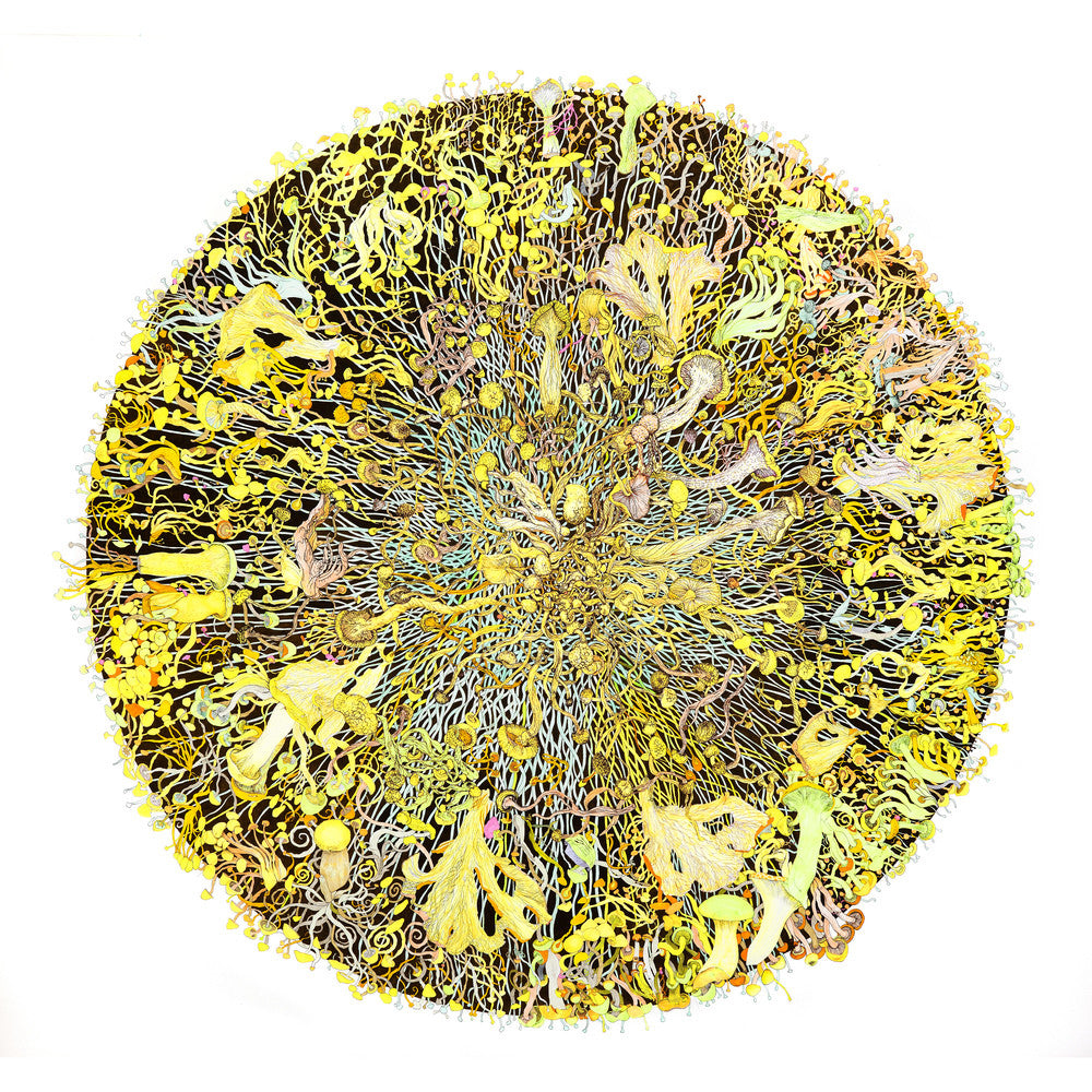 Artist Claire Burbridge's fine art print Mycelium Universe 1 (Fusion), from an original pen and ink drawing