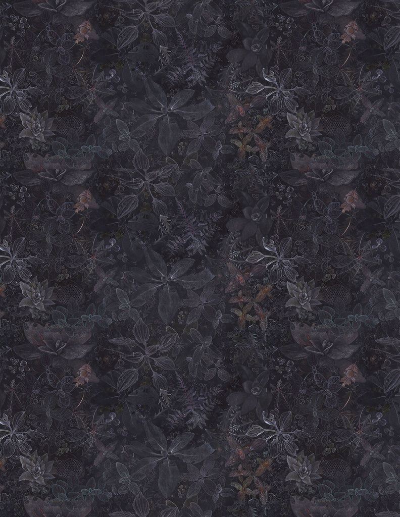 Night garden dark and moody atmospheric wallpaper designed by Claire Burbridge depicting wild edible and medicinal plants chalk like marks on a black background