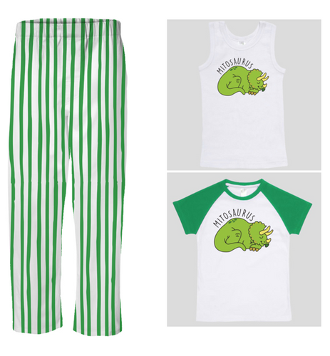 PJ Set: Little's Mitosaurus Top and Pants