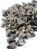 Turritella Agate 1 lb Tumbled Portion