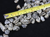 Dalmatian Jasper (Natural) Loose Tumbled 3 pcs