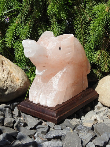 Pink Himalayan Salt Lamp (Elephant-Shaped)