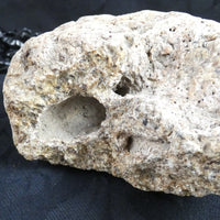 Fossilized Dinosaur Bone (350)