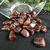 Red Tiger's Eye (1 lb tumbled)