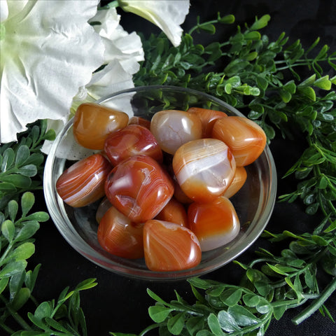 Carnelian (Lg.) Tumbled Loose Stone (1 pc)