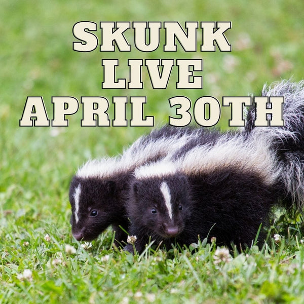 12497 Skunk Live April 30th 2021