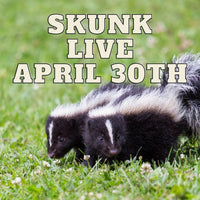 12488 Skunk Live April 30th 2021