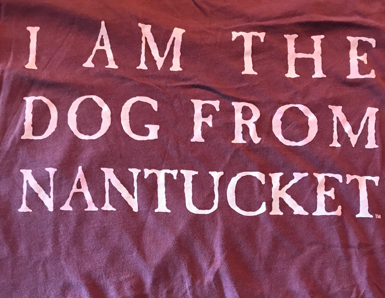 Yellow Dog: I am The Dog From Nantucket Short Sleeve T-shirt:
