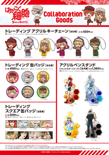 (Pre-Order Goods, Arriving 2nd week of March) Cells at Work! x Sweets Paradise Cafe Collaboration Goods