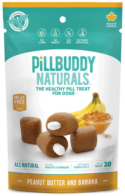Pill Buddy Peanut Butter and Banana Dog Treats