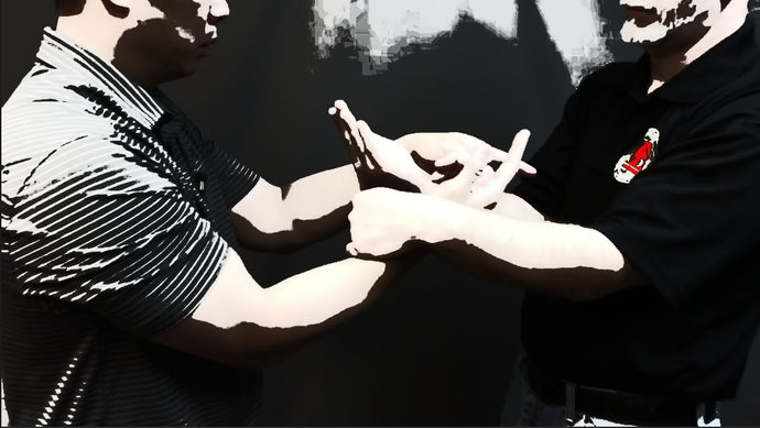 Is Chi Sao The Most Important Drill In Wing Chun Kung-Fu?