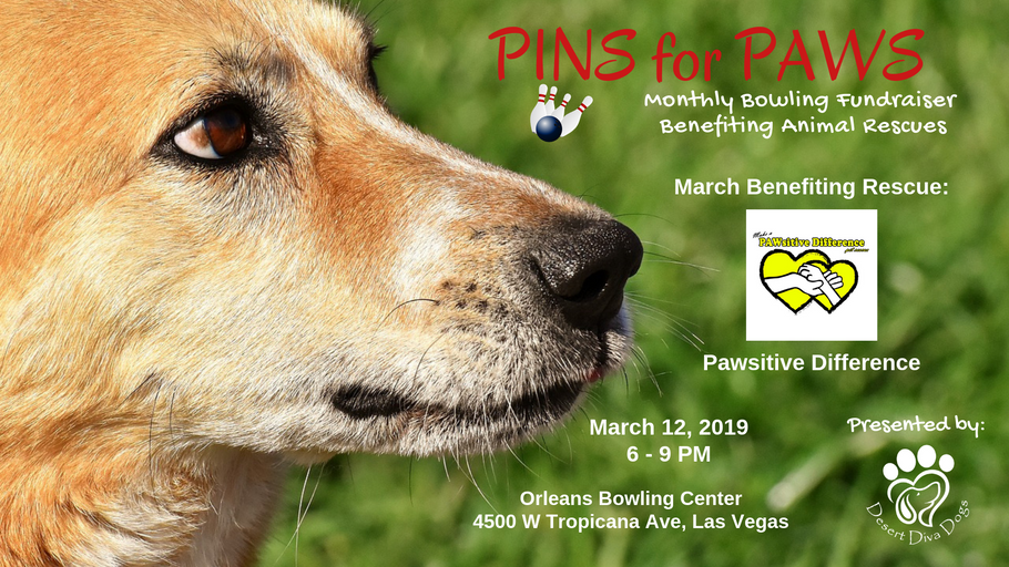 Pins for Paws - Congratulations Pawsitive Difference