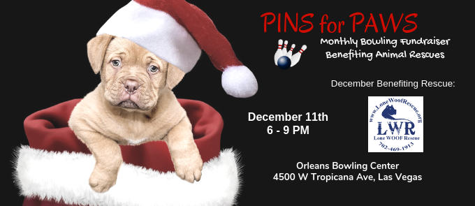 Pins for Paws - Congratulations Lone Woof Rescue