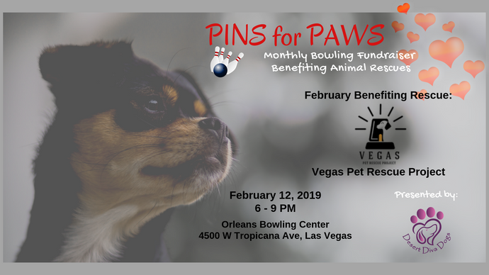 Pins for Paws - Congratulations Vegas Pet Rescue Project