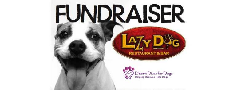 Lazy Dog Restaurants - Fund Raiser