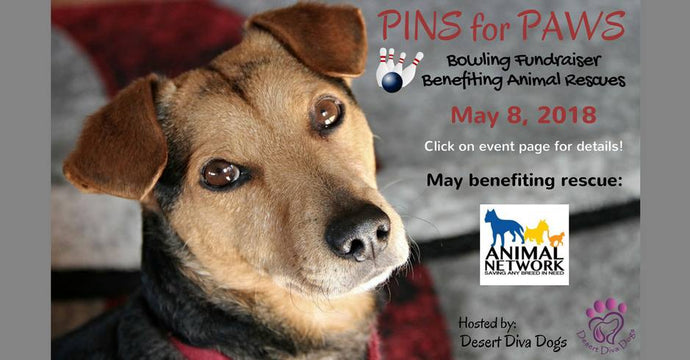 Pins for Paws - Congratulations to Animal Network