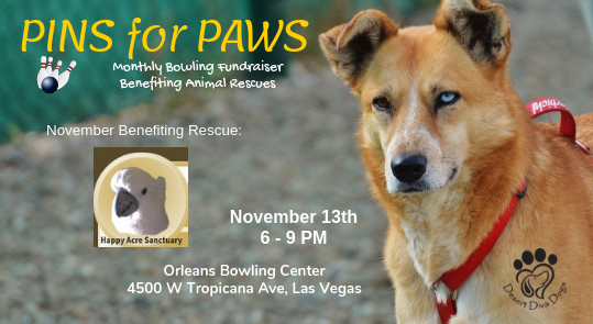 Pins for Paws - Congratulations Happy Acre Sanctuary