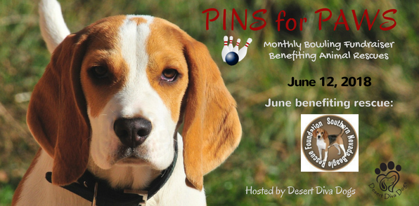 Pins for Paws - Congratulations Southern Nevada Beagle Rescue Foundation