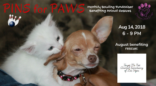 Pins for Paws - Congratulations Forget Me Not Animal Sanctuary Las Vegas