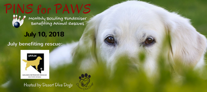 Pins for Paws - Congratulations Golden Retriever Rescue Southern Nevada