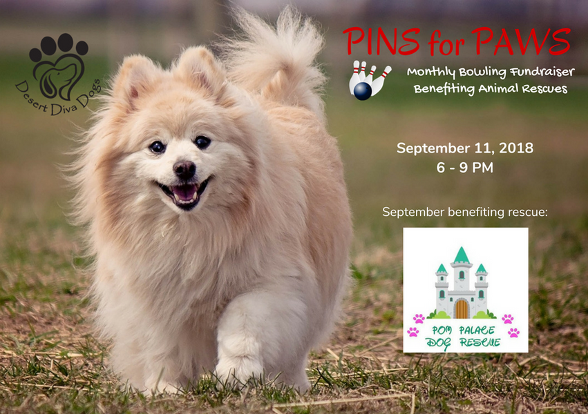 Pins for Paws - Congratulations Pom Palace Dog Rescue