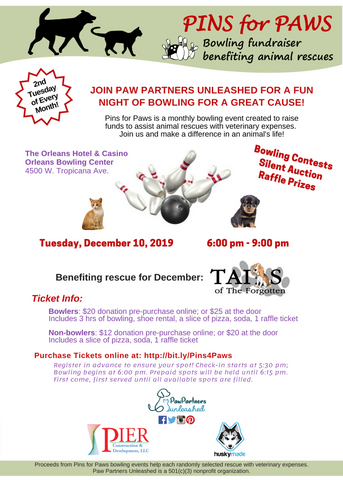 December 2019 Pins for Paws Event Flyer