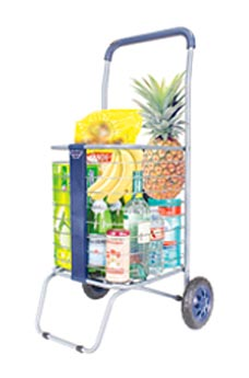 Browse our Smart Carts