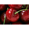 pongs creek cherries.