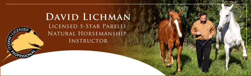 David Lichman 5-Star Parelli Professional