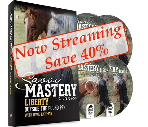 Liberty Outside the Round Pen - Streaming