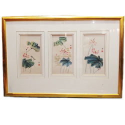Framed Water Colour Painting