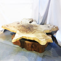 Driftwood Rotatable Coffee table - Redsagaseeds