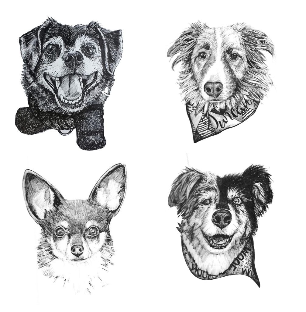 Drawing Ink Pet Portrait