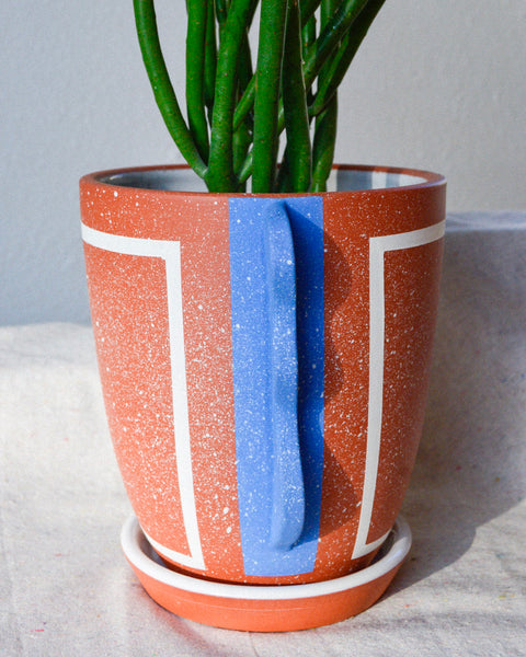 Living Color: Portrait Planter