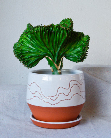 Big Soft Landscape Planter