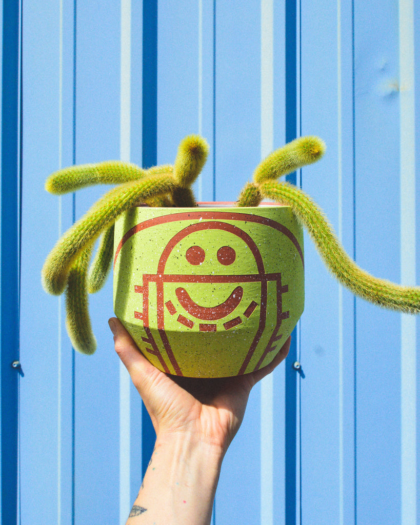 Happy Lime Court Planter