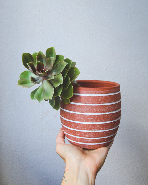 Big Stripe Planter