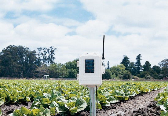 Davis 6345NZC Complete Wireless Soil Temperature, Moisture Station Bundle