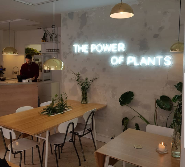 NEONSKILTET X PLANT POWER FOOD