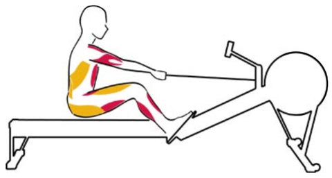 The Recovery Rowing Exercise