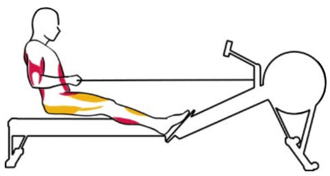The Finish Rowing Exercise