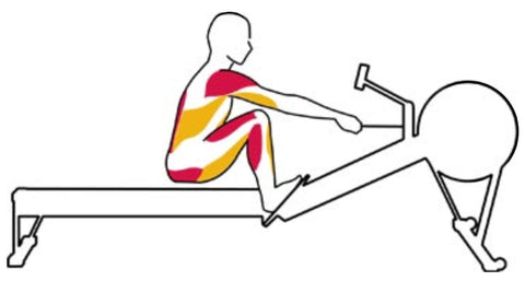 The Catch Rowing Exercise