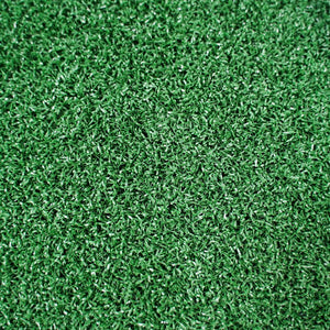Morgan Astro Turf (10m x 2m) - Green