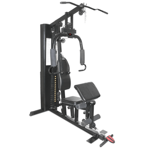 Lifespan Cortex SS2 Single Station Gym